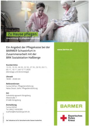 Download PDF: Zu Hause pflegen
